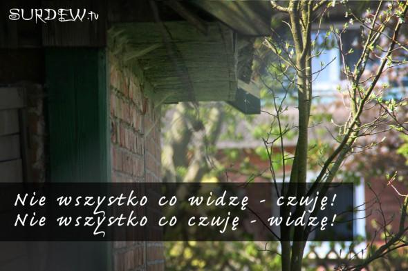 © Foto: Surdew